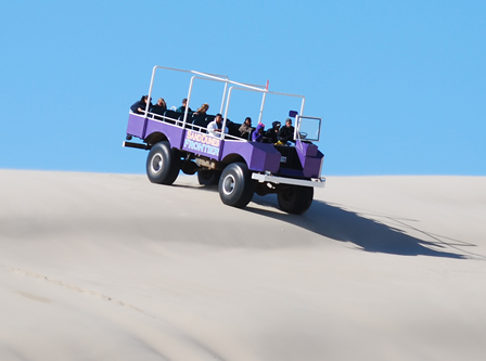 Oregon Dunes Big Buggy Sand Dunes Tours
