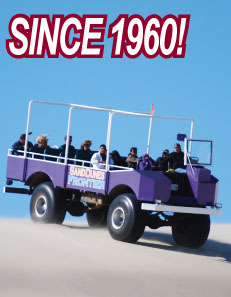 Big Buggy Sand Dune Tours Since 1960